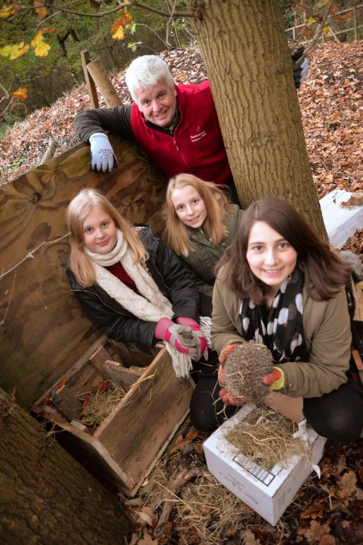 National Motorcycle Museum >> Young hedgehog carers to feature on BBC show Countryfile | The Stratford Observer